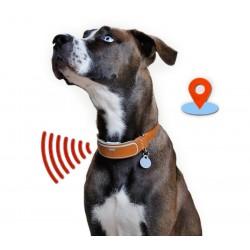 Ошейники с GPS-трекером (11)