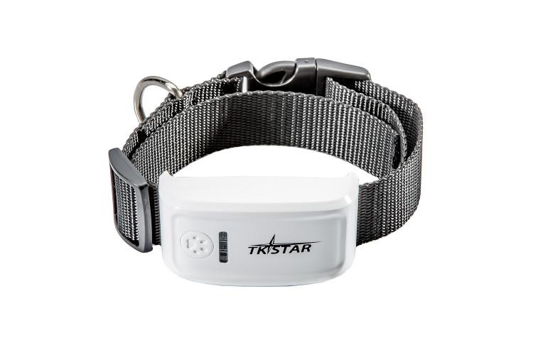 GPS трекер с ошейником для животных, собак и кошек TK STAR Pet tracker (TK 909)